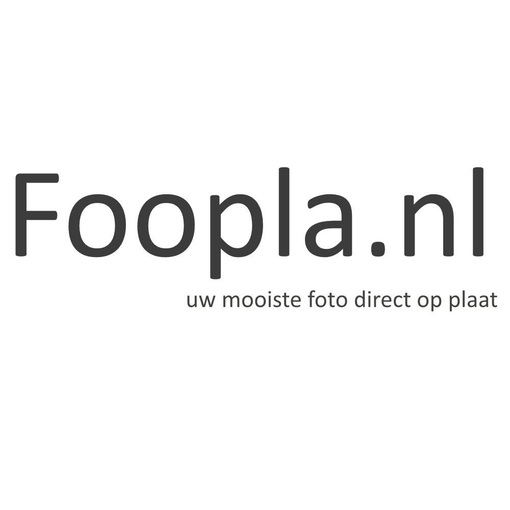Forex webshop gratis